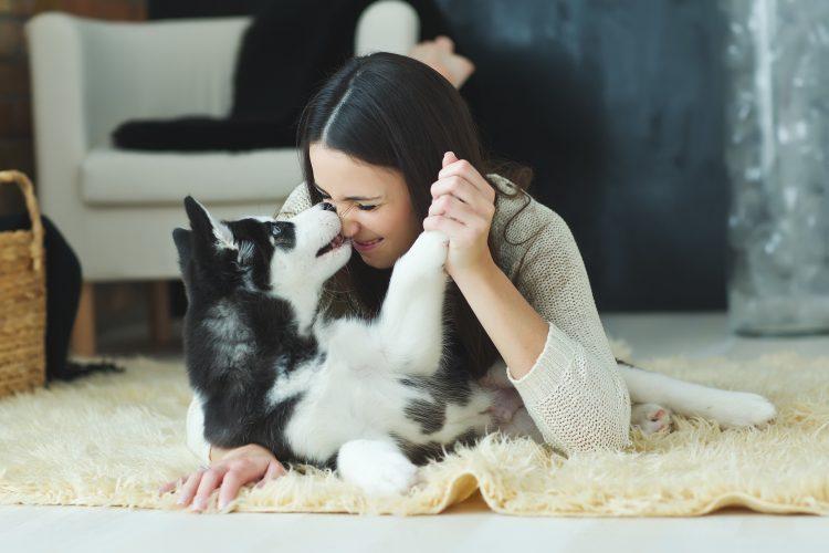 avoir-un-chien-bon-pour-le-moral